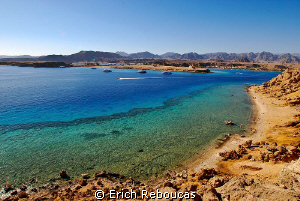 My backyard - All the colors of the Red Sea by Erich Reboucas 